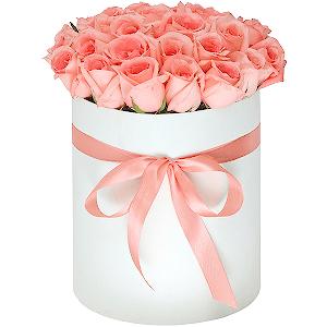 Заказ и доставка цветов в сп токмак доставка цветов