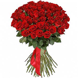 51 красная роза премиум с доставкой в Санкт-Петербурге