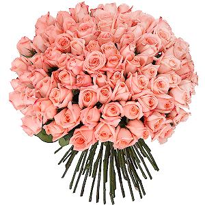 Букет из 101 розовой розы с доставкой в Санкт-Петербурге